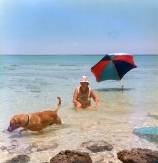 Cooling off among the Stromatolites, Hamelin Pool  - 1976