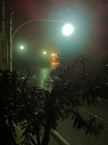 street mist apple water leaves rain fog landscape march loneliness sad streetlamp depression depressed lonely oleander disappointment humidity abruzzo chieti iphone disappoint seasonalaffectivedisorder iphone4
