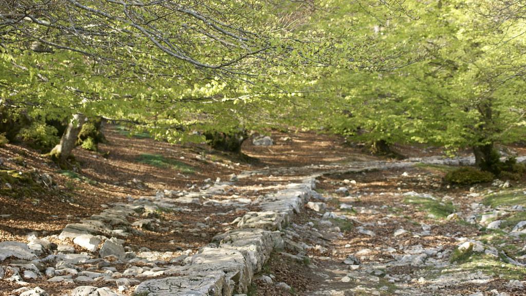 Camino Al Tunel De San Adrian Brais Hermosilla Flickr