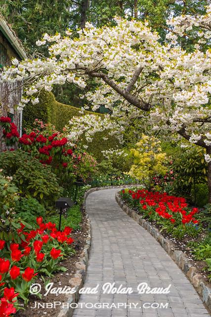 Garden Path JN029245