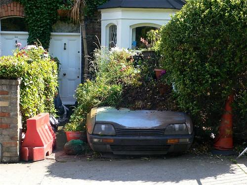 Extreme auto-gardening