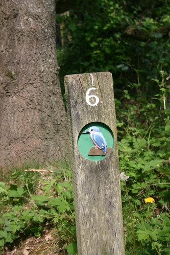 6 Kingfisher Trail | by Sarah Heenan