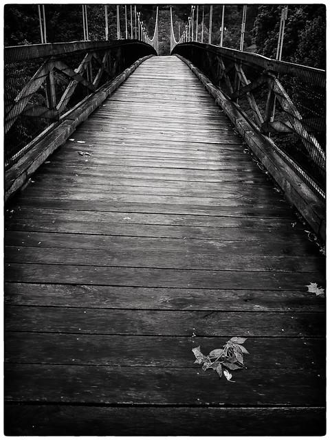 Rainy Morning on the Bridge