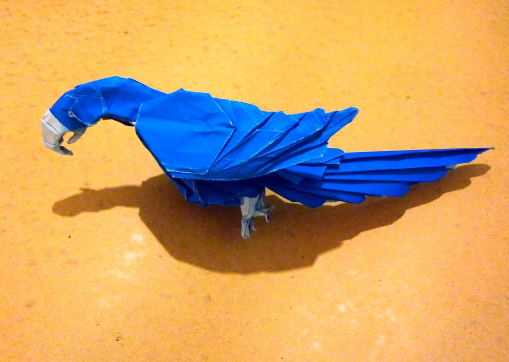 How to Make an ORIGAMI Macaw Parrot - Origami Bird Tutorial ... | 730x1024