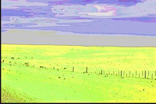 abstract desert