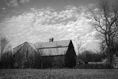 blackandwhite bw ontario canada barn farm odessa