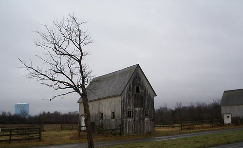 amsterdam ny collection old farm sanford stud horse wealthy decayed wood