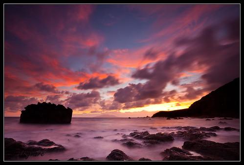 newzealand northisland tawharanui