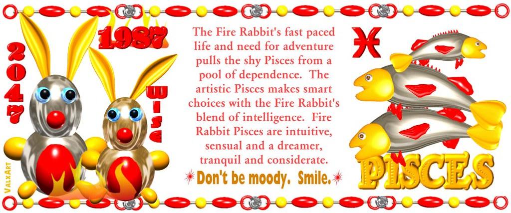 Valxart 1987 2047 Fire Rabbit Chinese zodiac people born i…   Flickr