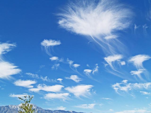 Wispy Jellyfish clouds 04.20.11