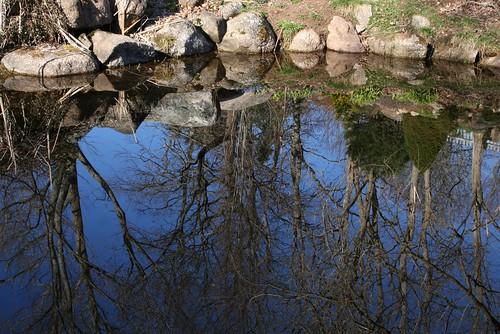 novascotia historicgardens annapolisroyal nspp bloomreport