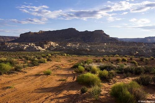 desert morning sunrise plants mesas glencanyon utah canonrebelt4i road nationalrecreationarea unitedstates america usa