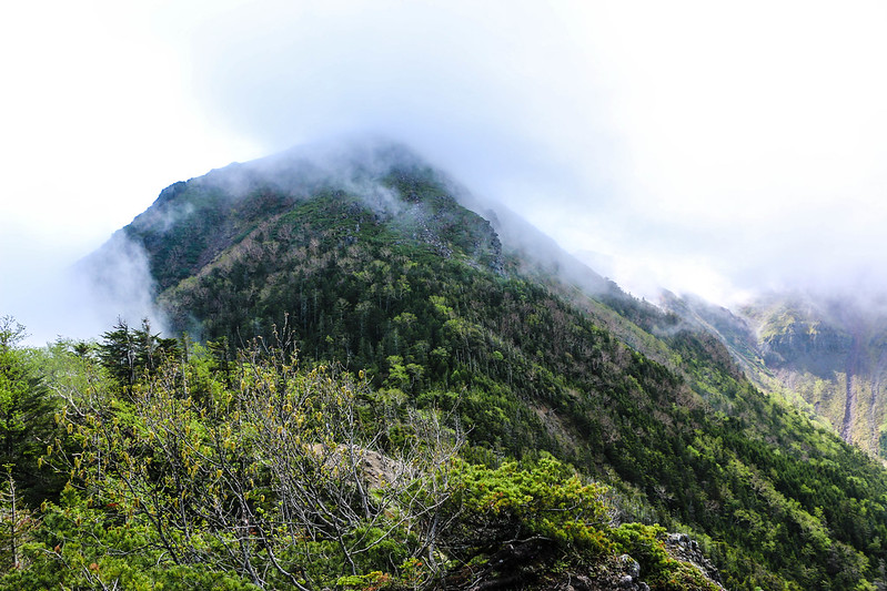 2014-06-29_00167_天狗岳.jpg