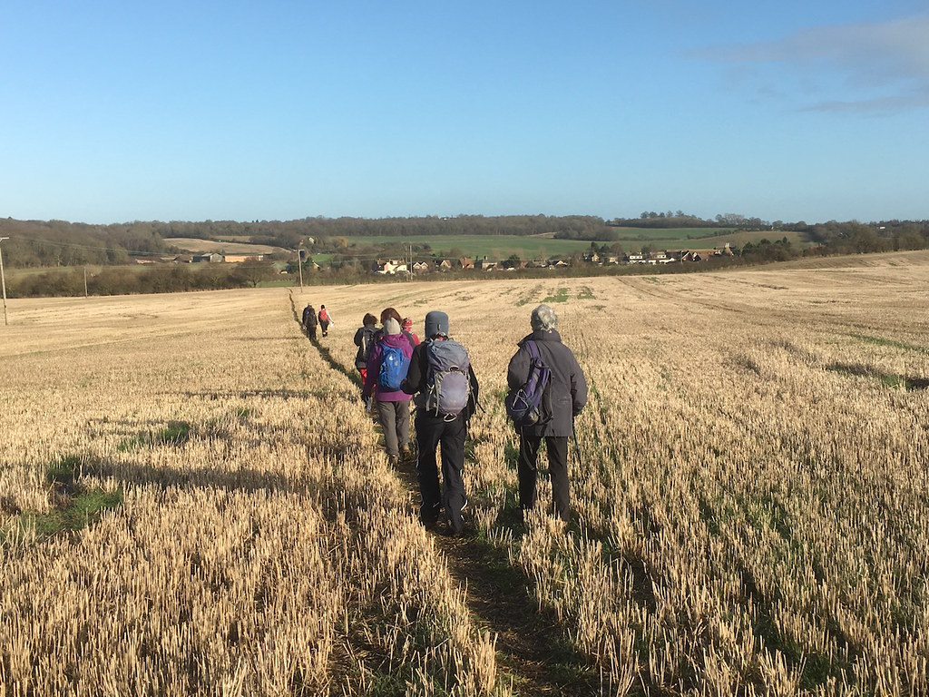 Another large arable field Farningham to Sole Street walk