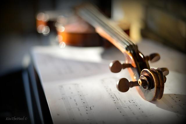 Musical Bokeh