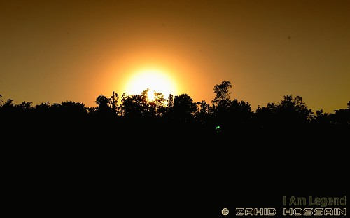 sunset sun brightness