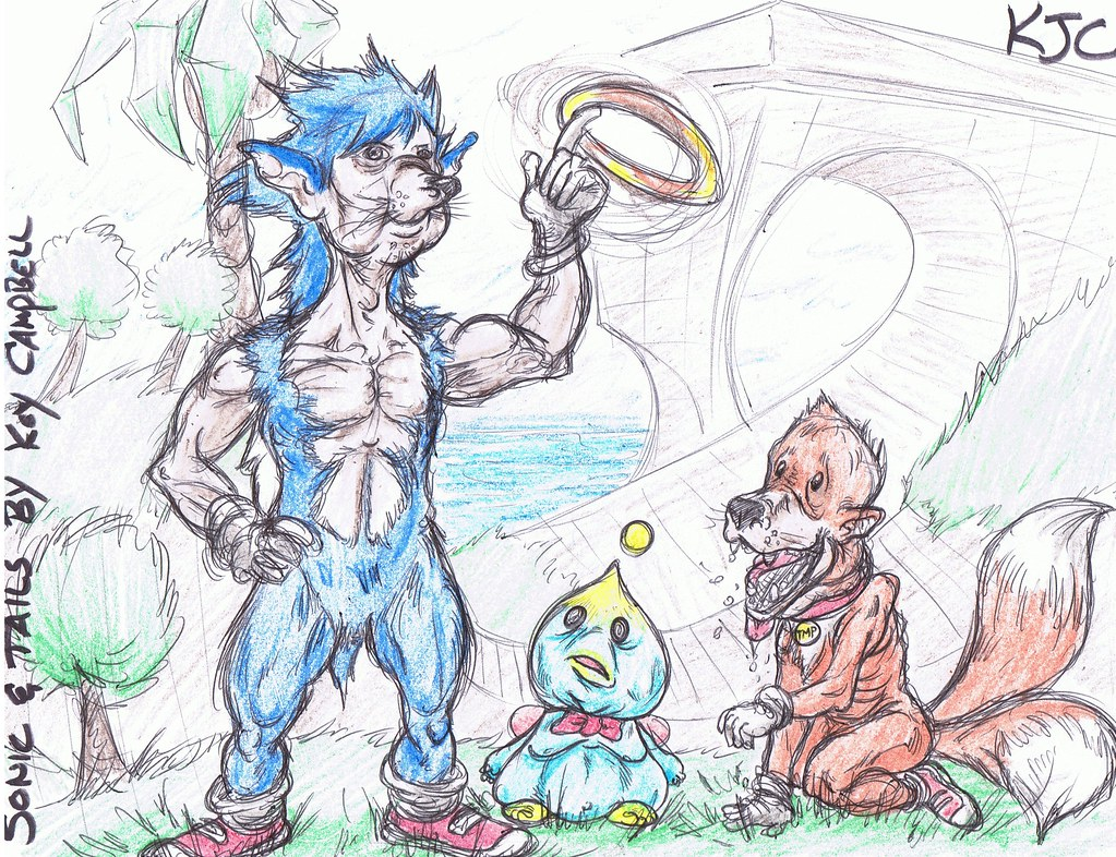 Sonic The Hedgehog Fan Art By Koy Campbell Koy Campbell Animator Illustrator Flickr