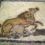 118. Museu de Ptolemaida. Mosaic