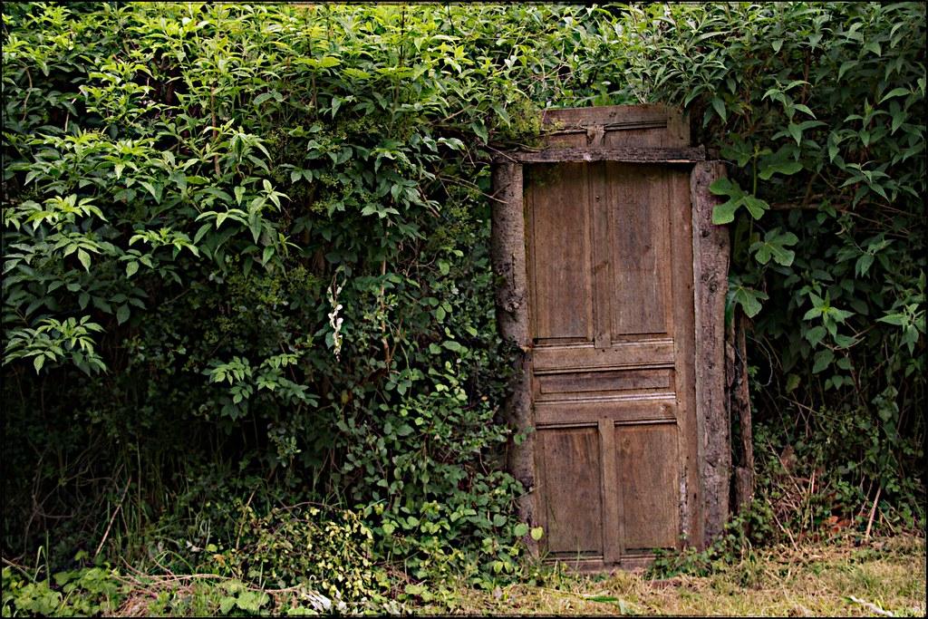 Mystery wooden door in the woods... | Olivier Levasseur | Flickr