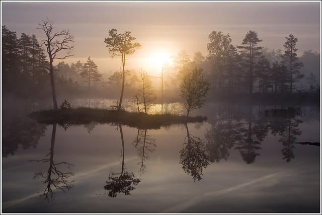 20110527. Pärnumaa. Tolkuse bog. Morning fog. 2244. 1. - EXPLORED