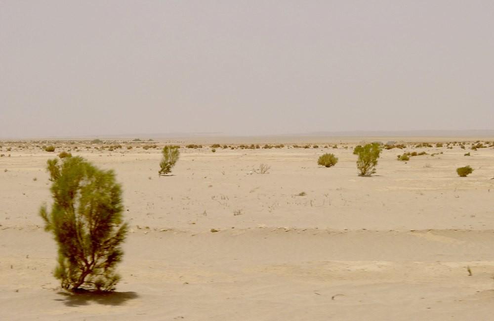 yazd-shiraz-L1020963