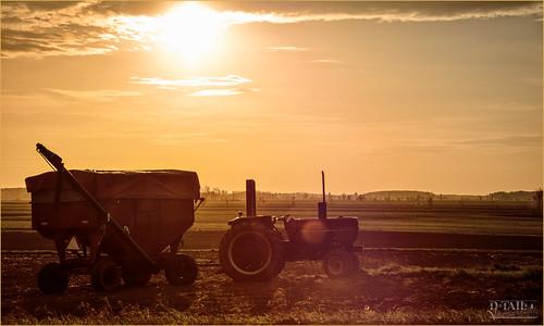 morning summer sky sun tractor rural sunrise landscape lights farmers