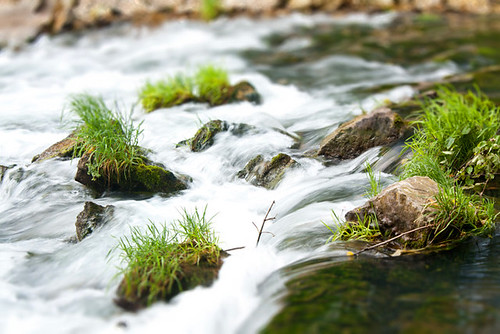 creek missouri tiltshift roaringriverstatepark 2011weeklyphotogroup