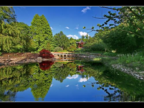 japan deutschland hamburg spiegelung botanischergarten kleinflottbek lokischmidtgarten