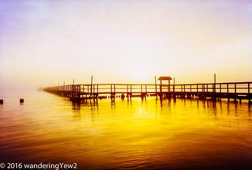 120 6x9 fuji6x9 fujigw690 fultonharbor fultonpier texas film filmscan fog mediumformat pier sunrise