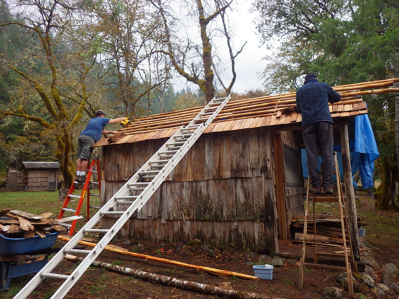 Construction of Bush cabin as a permanent structure in a locatity of untamed bush.