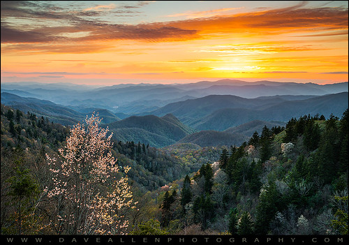 sunset mountains nc nikon tn tennessee northcarolina cherokee smoky appalachian blueridgeparkway serviceberry daveallen greatsmokymountains d800 waterrockknob singhray outdoorphotographer fstoploka