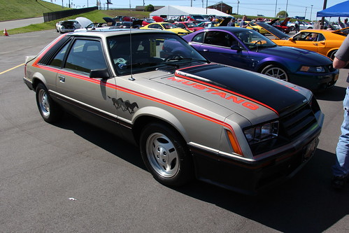1979 Ford Mustang Cobra Pace Car