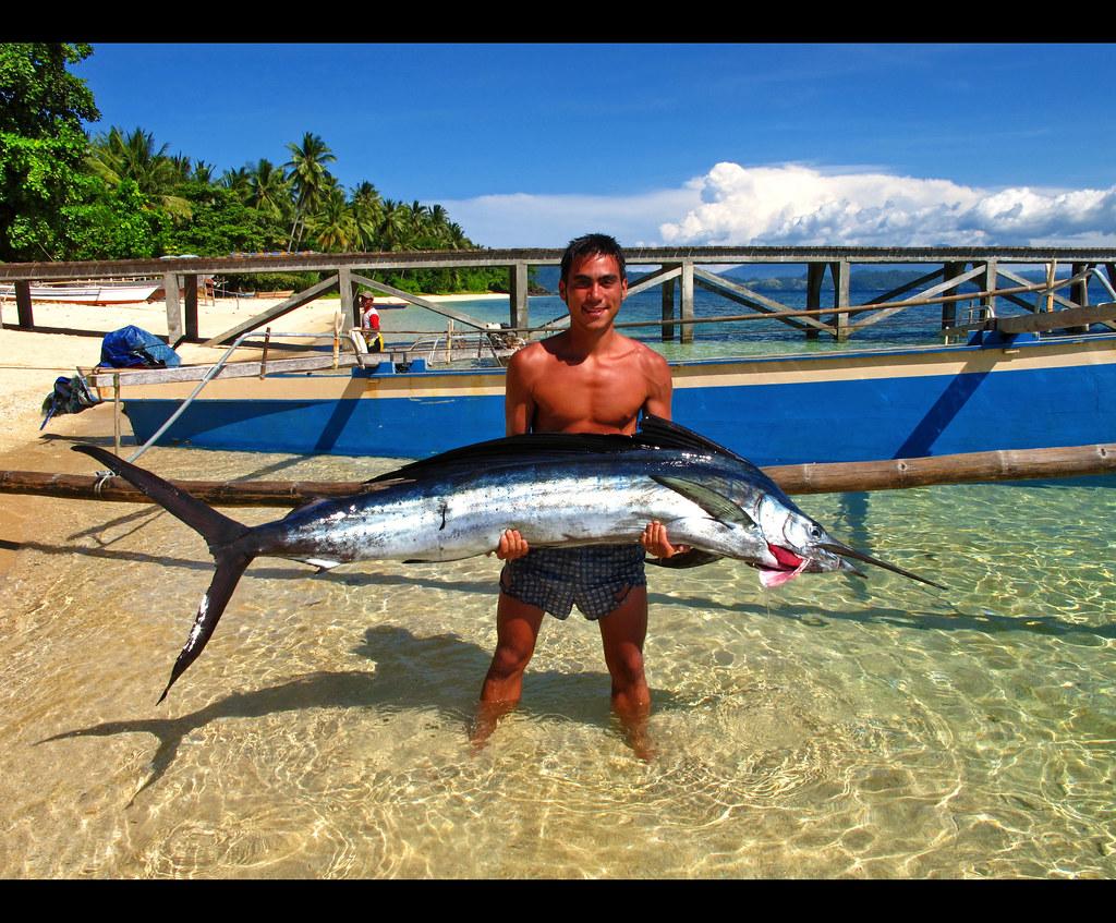 Ikan Layar | Indo-pacific sailfish | Giuseppe Suaria | Flickr