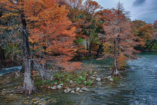 Fall in Gruene