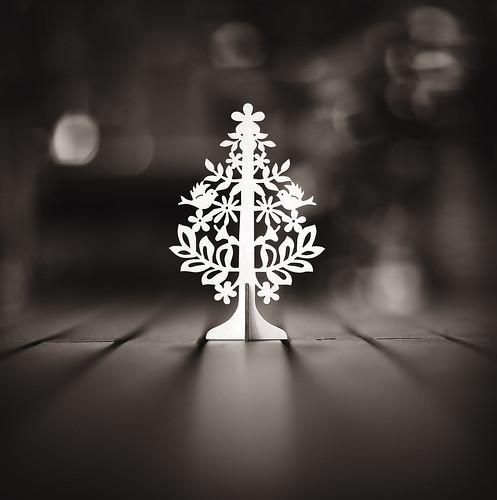 Tiny Christmas Tree | by {JO}