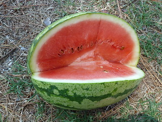 Watermelon | by gianouts