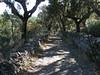 Marvao, středověká cesta do vesnice Portagem, foto: Petr Nejedlý