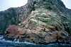 Islas Ballestas, foto: Eva Trnková