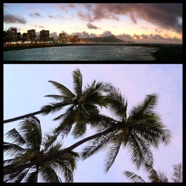 Good morning Waikiki