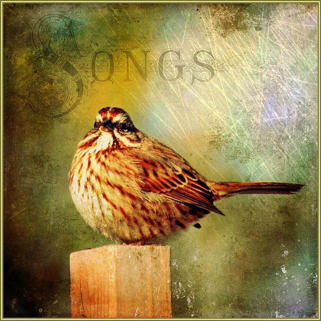 songs . . .