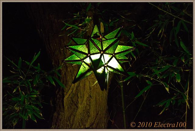 Una luz en la noche para que ilumine nuestro sendero.