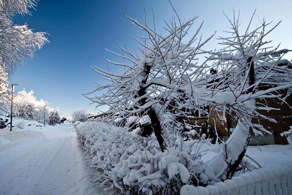Winter on Dagsländevägen