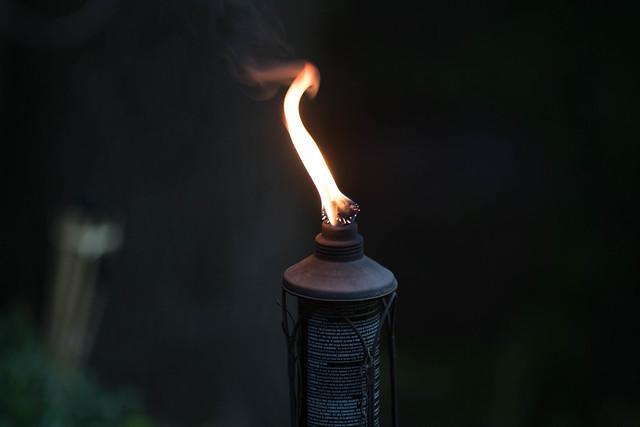 Tiki Torch-2.jpg