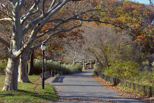 newyorkcity nycparks inwoodhillspark spuytenduyvil autumncolor autumn paths