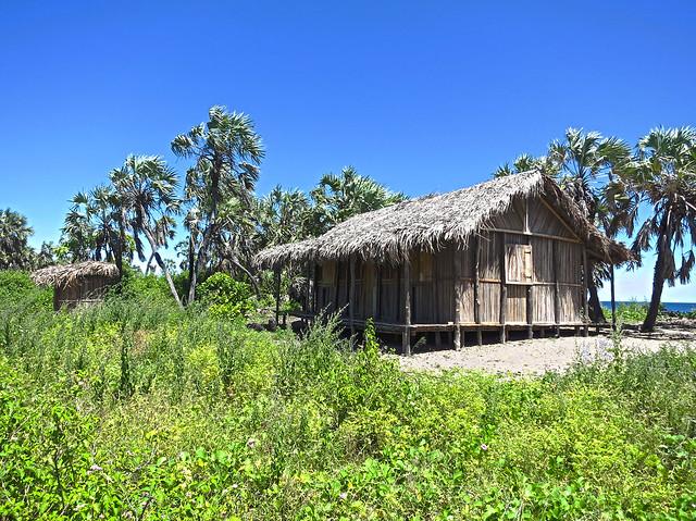 Madagascar9-061.jpg