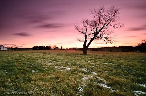 longexposure pink sky snow tree clouds landscape nikon purple maryland explore filter nd frontpage 1224mm f4 hitech d7000