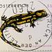 great stamp Austria 55c Fire salamander (Salamandra salamandra; Feuersalamander; Salamander, Огненная саламандра, 火蠑螈, Vuursalamander, Foltos szalamandra, salamandra-de-fogo, ファイアサラマンダー) timbre Autriche Briefmarke Österreich selos марка postzegel Oostenri