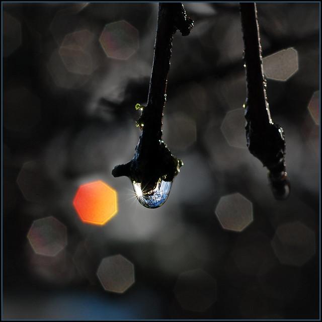 raindrops & sunshine . . .