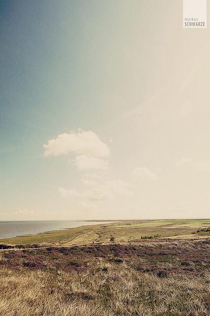 Sylt 2010 -  landscape