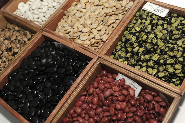 CIAT beans shipped to Svalbard Global Seed Vault